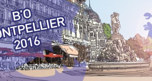 slide Blockout Montpellier 2016