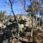 Falaise de Fontainebleau – Rocher Canon -