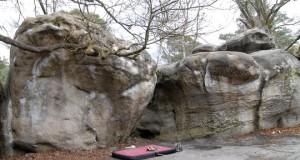 Falaise de Fontainebleau – Le Bas Cuvier -