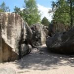 Falaise de Fontainebleau – La Roche aux Sabots -
