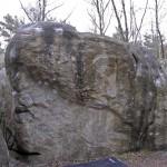 Falaise de Fontainebleau – Isatis -