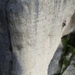 Falaise de Gorges du Tarn (Amphithéâtre) -
