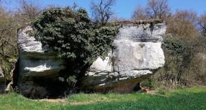 Falaise de Chaignay -
