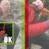 Sécurité: Pensez au noeud en bout de corde…!