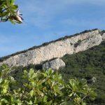 Falaise de Rocher des aures -